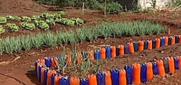 Projeto em escola de Uberlândia estimula consciência ambiental